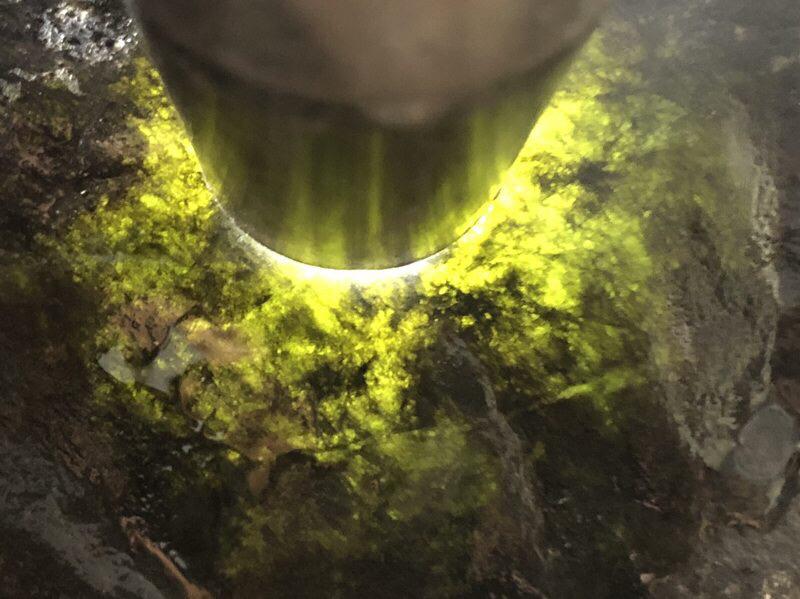 【👉 【名称】3.9kg莫湾基全赌料       【重量】3.9kg       【尺寸】170-120-100mm       【产地】缅甸新货翡翠原石       【描述】新货来袭!《免费切,免费盖手镯》莫湾基全赌料,种好压手皮壳完整紧致,灯下水长起荧光,喜欢的老板速来抢购H801】图2