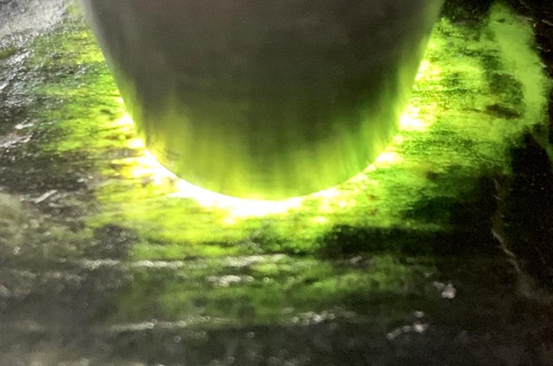 #精品莫西沙小料#👉 【名称】0.85公斤莫西沙全赌料 【重量】0.85公斤 【尺寸】120-75-