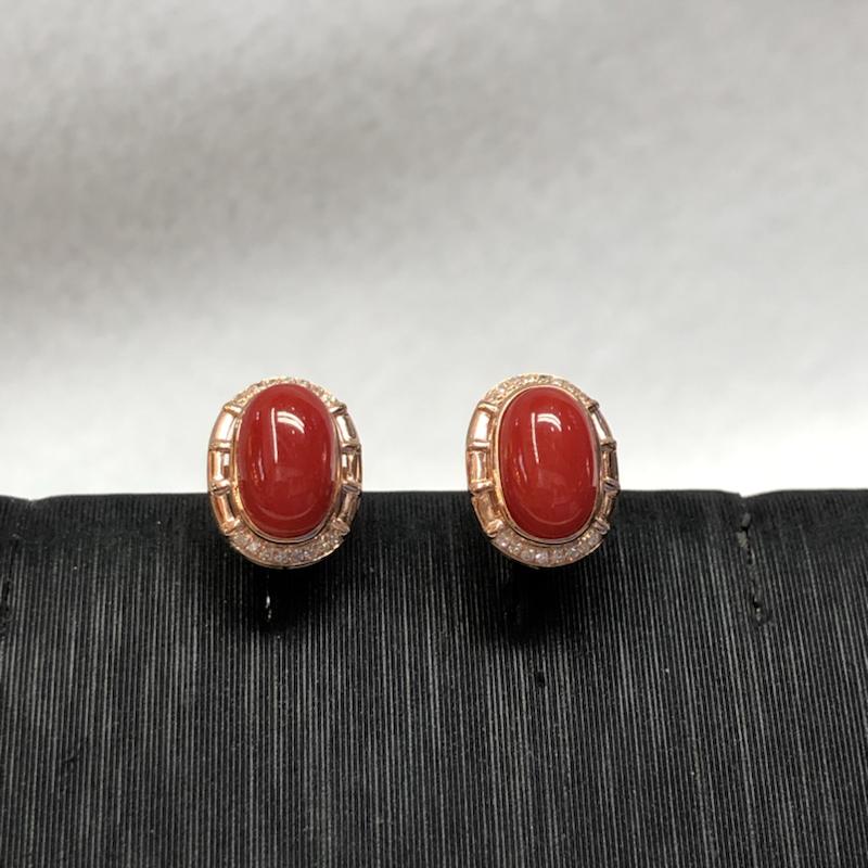 【物美价廉】红珊瑚耳钉,日本阿卡材料,颜色艳红色,裸石尺寸为8.6*5.7mm,光泽柔润,18k真金