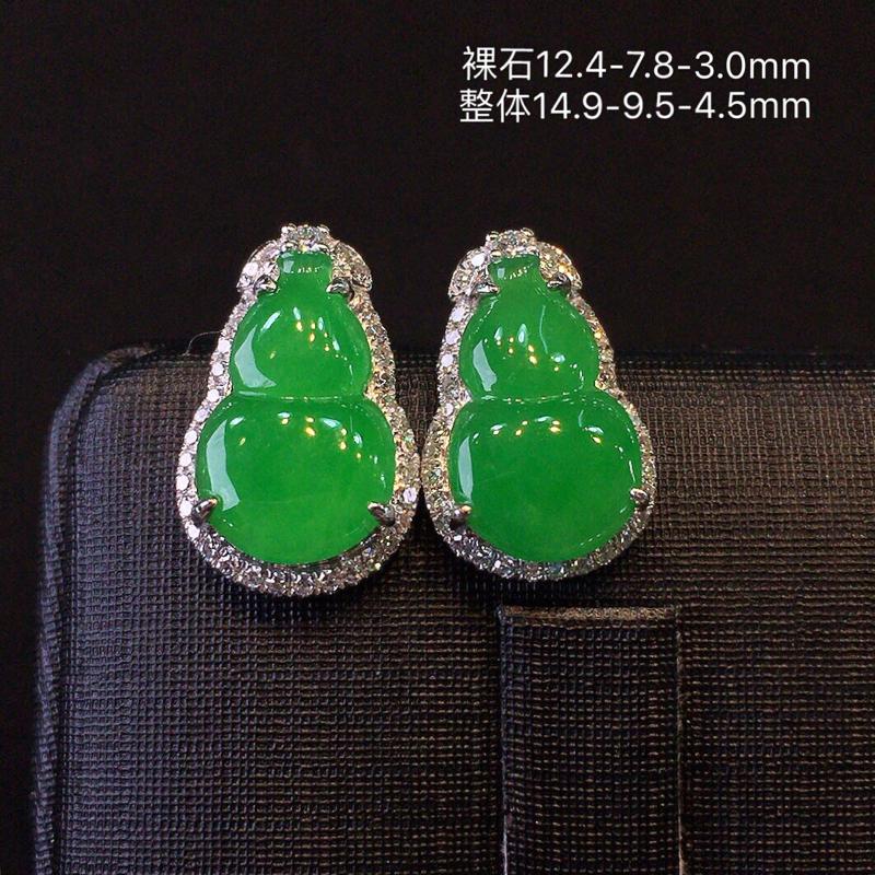 冰种阳绿女款葫芦耳钉,主石质地细腻,种老水足有光泽,色辣起阳,颗粒饱满,品相正,上身效果很好,18k