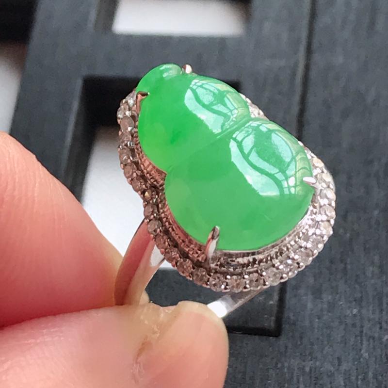 翡翠A货,18K金镶嵌冰糯种满绿饱满葫芦戒指,玉质细腻,底色漂亮,上身高贵,尺寸内径16.6,裸石1