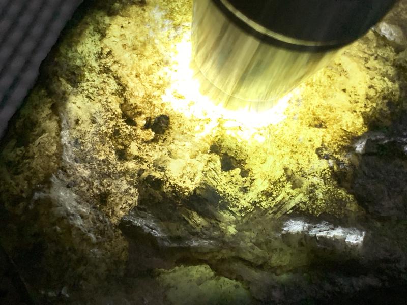 #免费切石解石加工手镯# 【名称】 1.7公斤莫西沙场口全赌料。 【重量】1.7公斤【尺寸】 220
